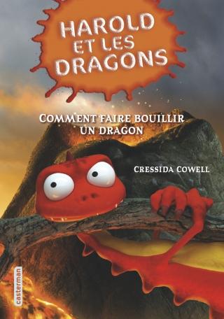 Comment faire bouillir un dragon
